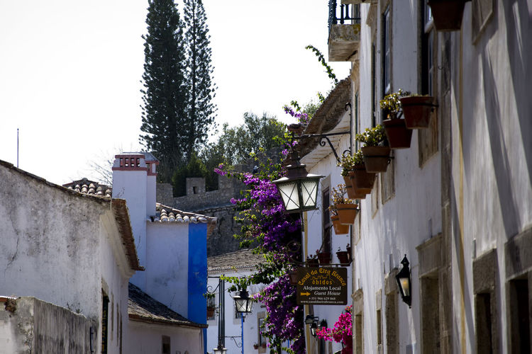 Impressions of the medieval city of Óbidos in Portugal. MedievalTown Obidos Portugal Portugal Architecture Building Exterior Built Structure Clear Sky Day House Low Angle View Medieval Castle No People Outdoors Residential Building Sky Tourism Tree Óbidos