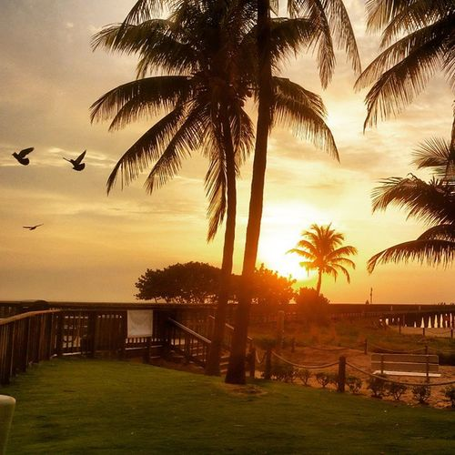 Good morning FL. I woke up today, everything else is a bonus. Beachlife Beachbum Pureflorida Gowiththeflow