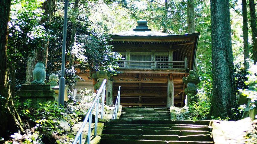 神への階 Japan Shrine EyeEm Nature Lover CanonFD  #oldlens
