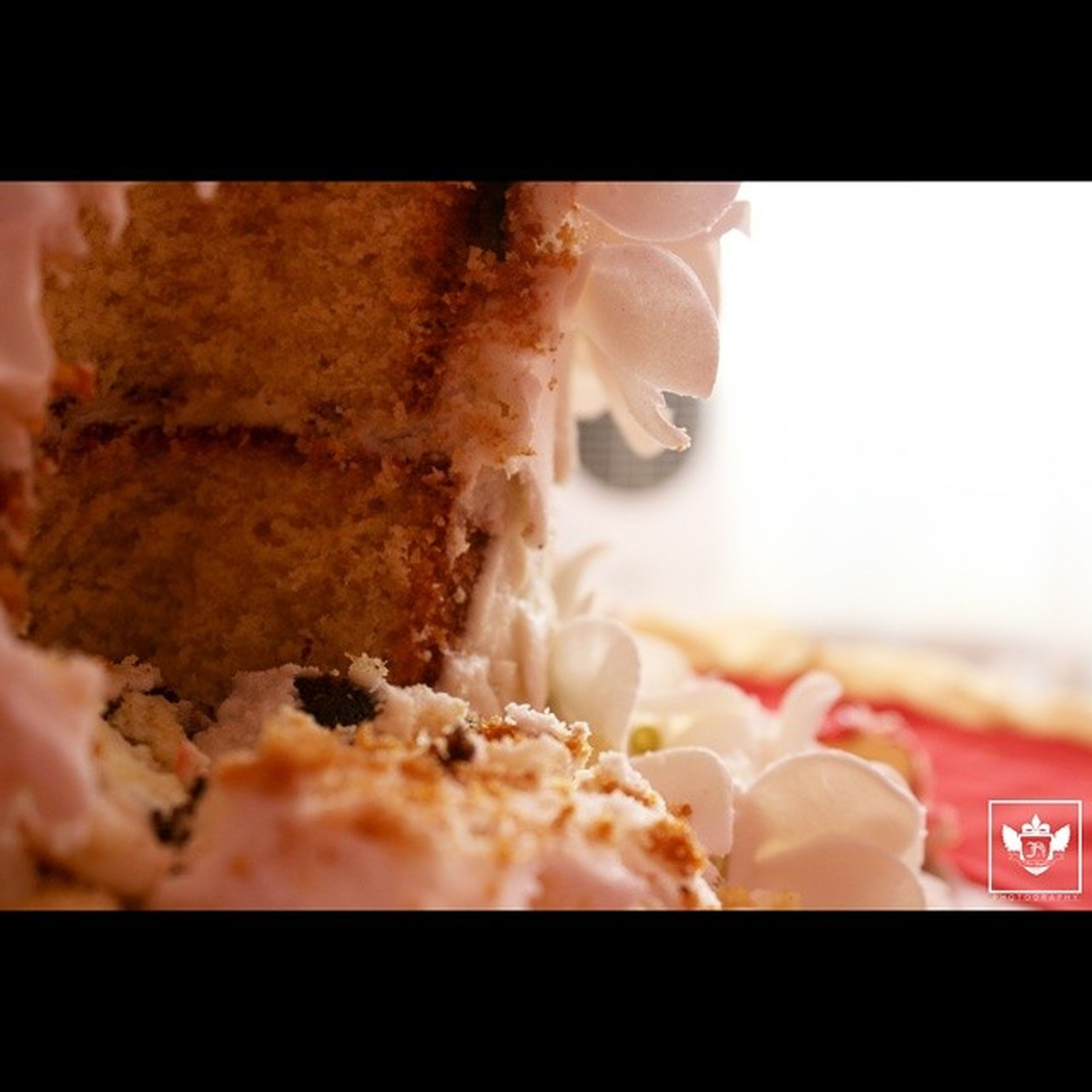 transfer print, food and drink, indoors, auto post production filter, close-up, freshness, food, sweet food, person, selective focus, focus on foreground, dessert, unhealthy eating, part of, indulgence, holding, temptation