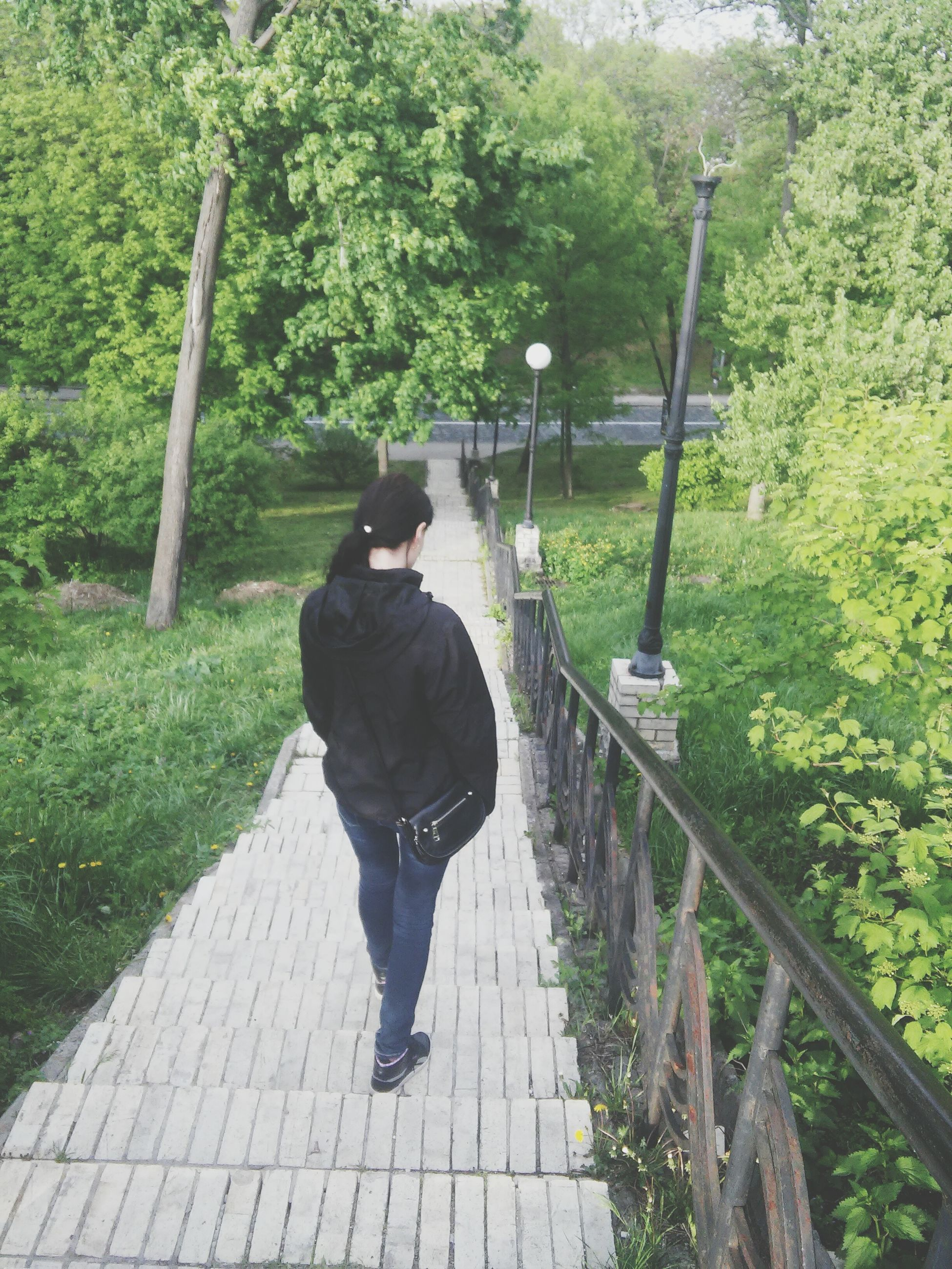 full length, rear view, lifestyles, walking, tree, leisure activity, the way forward, men, casual clothing, railing, standing, footpath, person, green color, plant, growth, day, outdoors