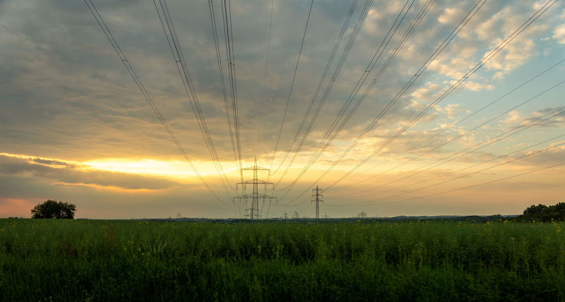 Beauty In Nature Cable Cloud - Sky Electricity  Electricity Pylon Environment Field Fuel And Power Generation Growth Land Landscape Nature No People Outdoors Plant Power Supply Scenics - Nature Sky Sunset Technology Tranquil Scene Tranquility