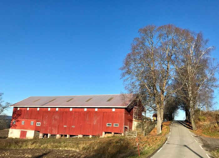 Clear Sky Day Architecture Built Structure Tree Blue Outdoors No People Building Exterior Nature Sky Farm Autumn Colors Autumn Growth Beauty In Nature Scenics Norway