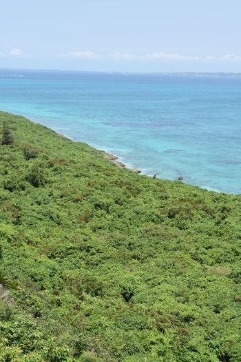 Sea Scenics -