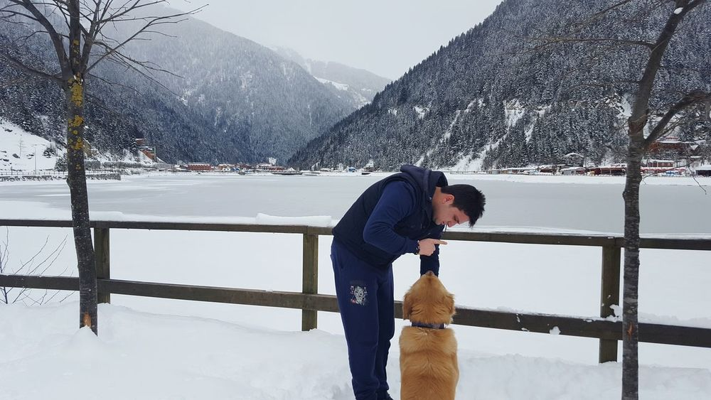 Uzungöl Trabzon Uzungol Turkey Huzur Outdoors Nature Water Sky Flying Internet Tree Day Growth Communication Close-up Beauty In Nature Connection Leisure Activity No People Cold Temperature Snow Turkey Global Communications Animals In The Wild One Person Travel Destinations