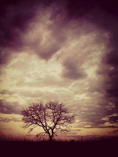 A um tempo para todas as coisas debaixo dos céus.