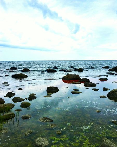 A picture of the Baltic Sea last autmn Sea Nature Scenics Horizon Over Water Water Sky Beauty In Nature Cloud - Sky Outdoors Baltic Sea