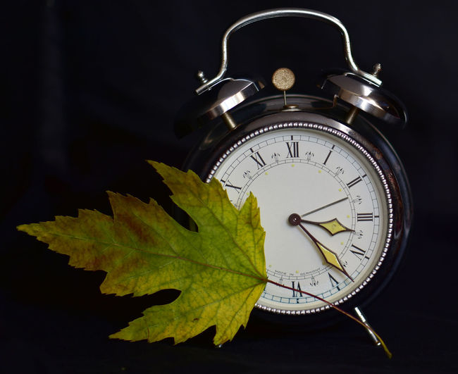 Alarm Clock Black Background Clock Clock Face Close-up Day Indoors  Leaf Minute Hand No People Time