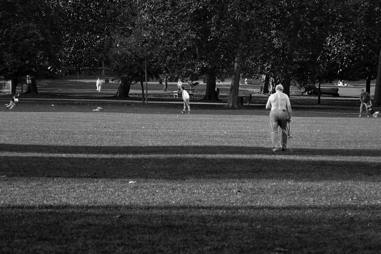 Rear view of people in park