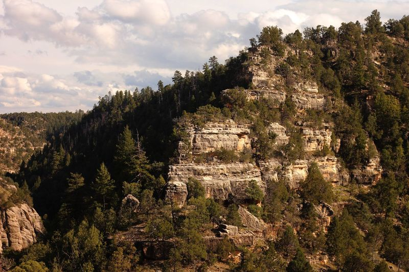 Landscape of walnut canyon Rock Formation Canyon Plant Sky Tree Growth Cloud - Sky Nature Beauty In Nature No People Tranquility Day Scenics - Nature Tranquil Scene Land Landscape Outdoors Non-urban Scene Field Sunlight Environment Architecture