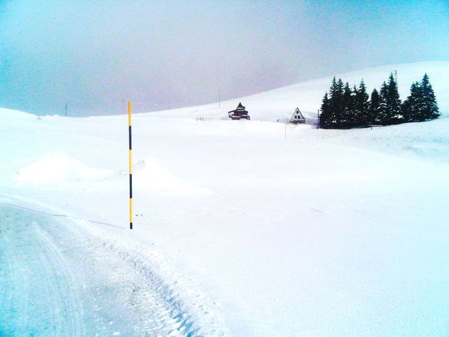 Snow Winter Cold Temperature Weather Nature Beauty In Nature Covering Ski Track Day Landscape Scenics Outdoors No People Tree Powder Snow Snowcapped Mountain White Mountains Winter Landscape White Color Scenic View Wintertime Snowing Pastel House
