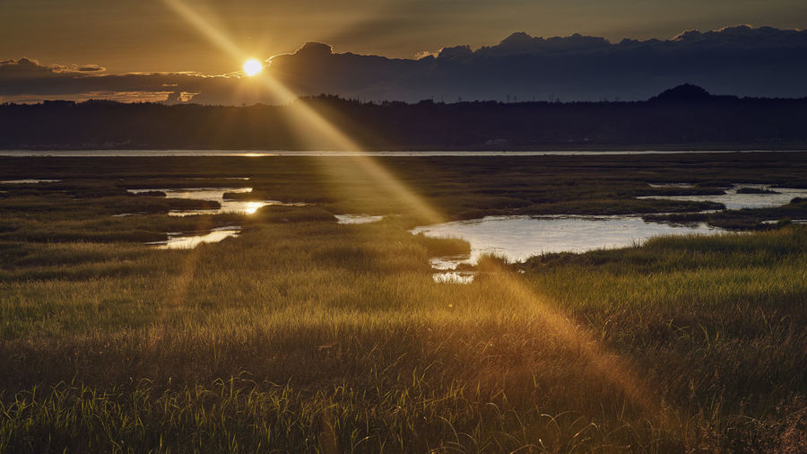 Sunset Quebec Beauty In Nature Canada Day Field Grass Growth Idyllic Landscape Nature No People Outdoors Scenics Sky Sun Sunbeam Sunlight Sunset Tranquil Scene Tranquility Water