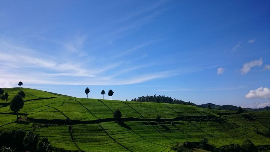 Scenic View Of Green Hill Against Sky On Sunny Day