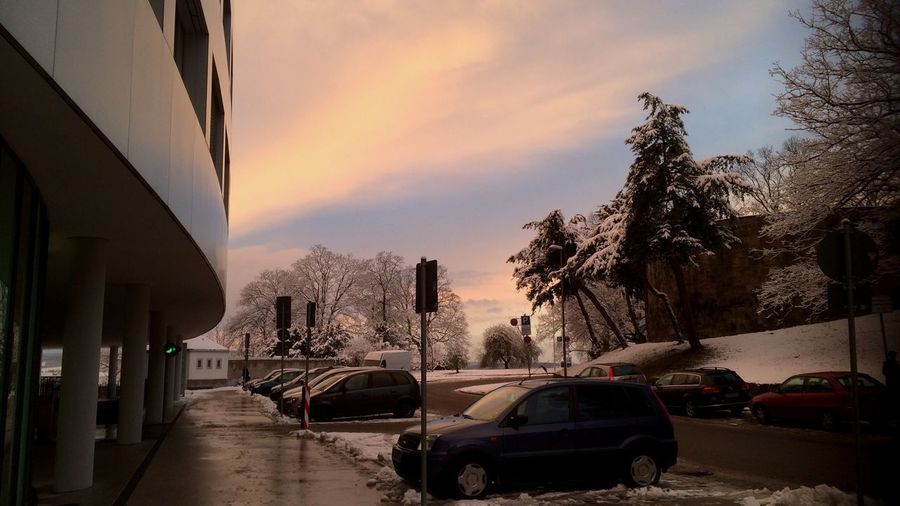 Cars Naturalized Wintertime Cold Modernity Lerone-frames Pastel Colors Dawn Kassel SpaceShip There Was A Sunset Then There Were Trees