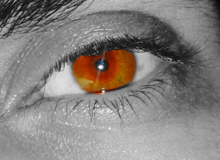 Follow4follow Follow Like4like Photooftheday Siguemeytesigo EyemEmGalicia EyeMe Blackday
