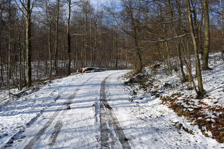 ein bisschen Schnee auch im Weserbergland Bare Tree Beauty In Nature Branch Cold Temperature Day Forest Landscape Nature No People Outdoors Road Scenics Sky Snow Sunlight The Way Forward Tire Track Tranquil Scene Tranquility Tree Winter