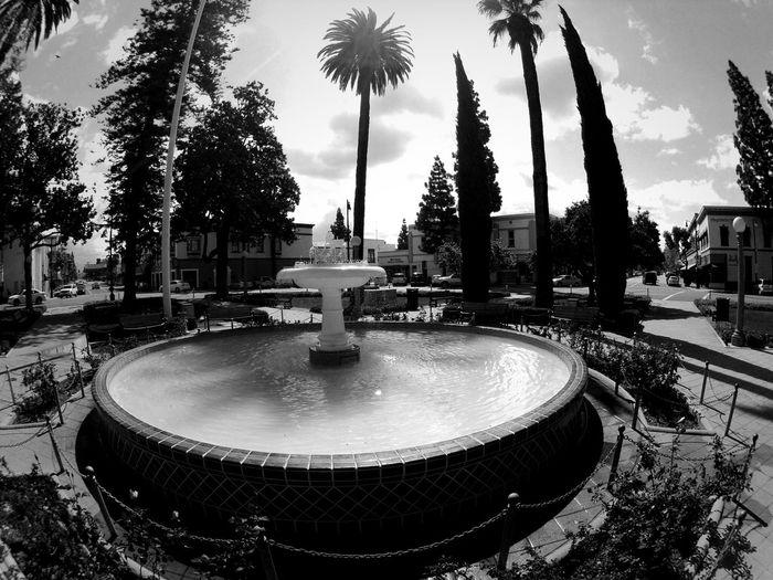 walking at orange circle fountain Walking