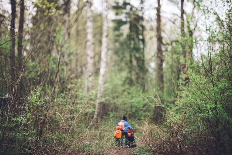 Rear view of mother and child walking on footpath in forest