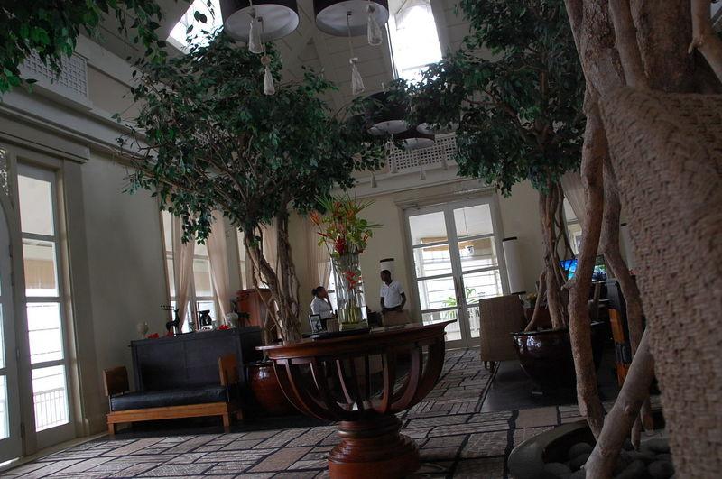 Banyan Tree Hotel Decoration Holiday Hotels Island Relax Relaxing Seychelles Tropical Rain