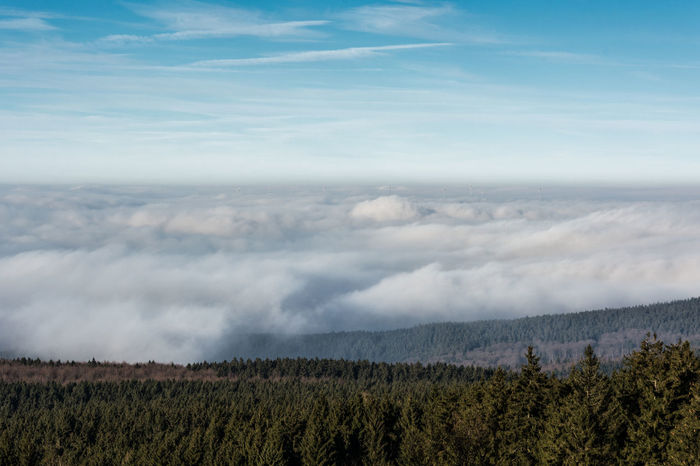 Ausblick Beauty In Nature Cloud - Sky Day Erbeskopf Hunsrück Inversionswetter Landscape Mittelgebirge Nature Nebel No People Outdoors Scenics Sky Tranquil Scene Tree Windräder Wolken über Den Wolken
