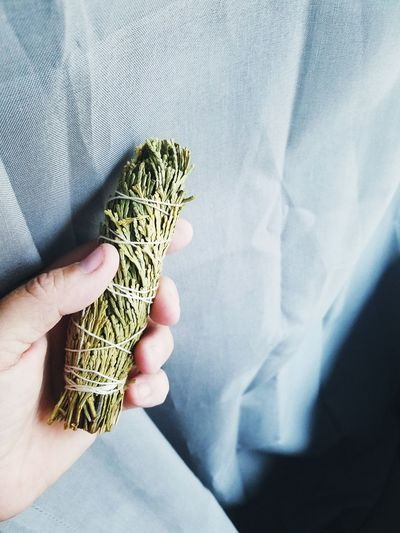 Close-Up Of Cropped Hand Holding Herbs Tied With Thread