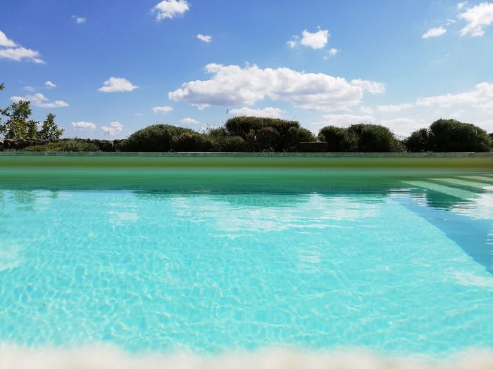 Tree Water Swimming Pool Beauty Blue Summer Relaxation Tropical Climate Tourist Resort Sky Calm