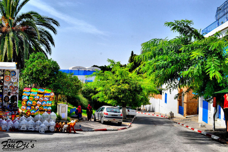 Sidi Bou Said Eyeemtunisia FouDji's Tunisia