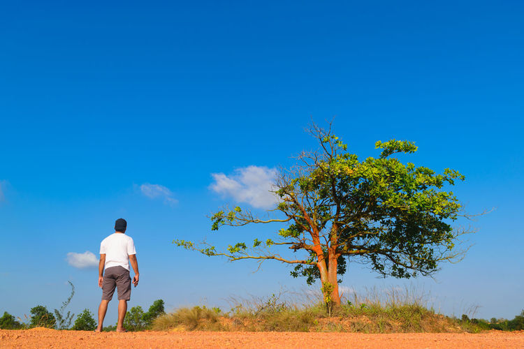 Rear View Of Mid Adult Man Standing On Field Against Blue Sky During Sunny Day