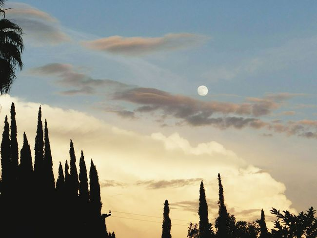 California Love Riverside, California Eye Em Best Shots Sunrise_sunsets_aroundworld Clouds And Sky Southern California Sky_collection Enjoying Life Daytime Moon Moon