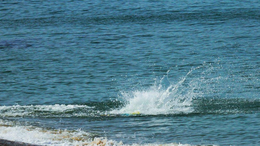 サーフィン初級……頑張れ~(*´︶`*)✿ Surfing Surfingphotography Hanging Out Seaside Marine Sports Spindrift Sinking Wallow Submerge Helloworld Hello World Taking Pictures EyeEmBestPics Hello HelloEyeEm EyeEm Gallery EyeEm Best Shots EyeEm Sea View Japan Photography EyeEm The Best Shots Hi! Hello EyeEm Japanese  Japan