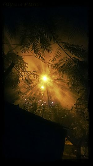 Fog and street light… Throught My Sony XperiaZ1..