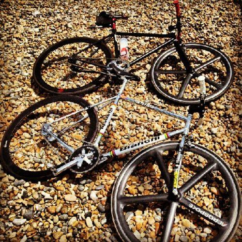 Fixie Fixedgear Aerospoke Fixieporn Brightonbeach Trackbike