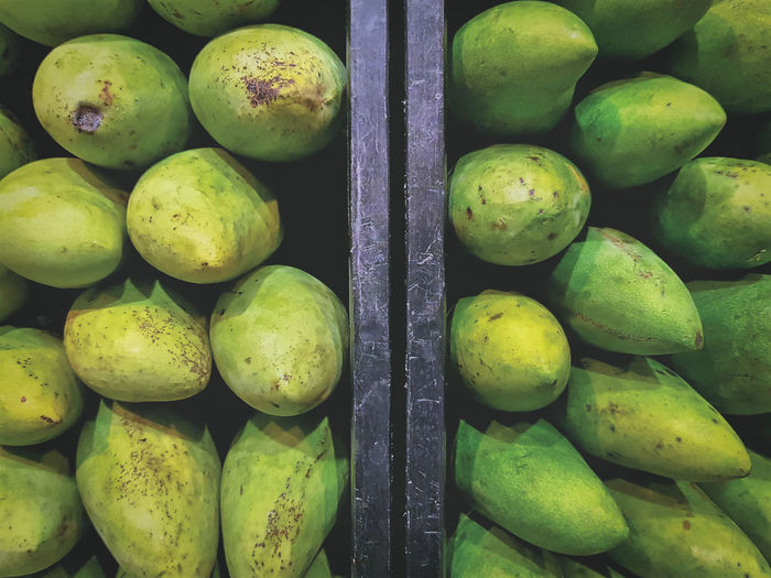 High angle view of fresh green mangoes with natural condition