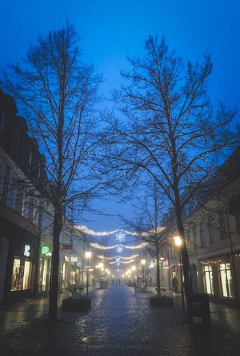 Through The Mist | A day well spent in Kristianstad, Sweden. Christmas Lights Mist Winter Streetphotography Cityscapes City City Life Silhouette Silhouettes People Taking Photos Showcase: January Eye4photography  EyeEm Best Shots EyeEm Gallery EyeEm Masterclass