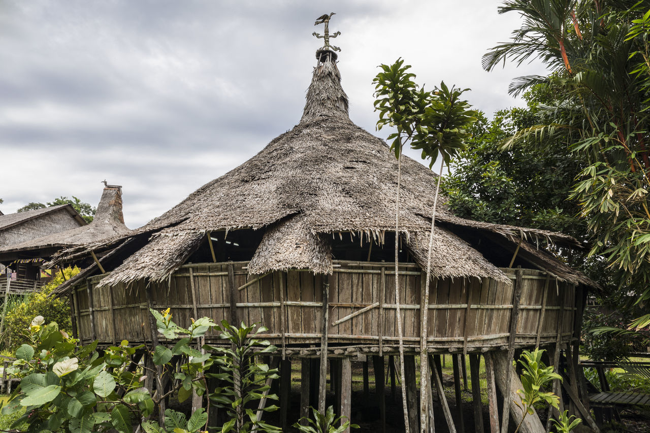 plant, built structure, tree, architecture, roof, sky, thatched roof, nature, building, building exterior, no people, cloud - sky, house, day, growth, low angle view, outdoors, hut, residential district, religion