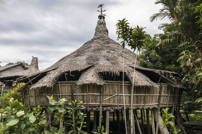 """The """"Baruk"""" is the traditional head house of the Bidayuh ethnic group in Sarawak. It used to be a place of congregation for Bidayuh warriors. Congregation Warrior Architecture Barouk Baruk Bidayuh Building Exterior Built Structure Cloud - Sky Day Ethnic Low Angle View Nature No People Outdoors Palm Tree Roof Sarawak Sky Thatched Roof Tree"""