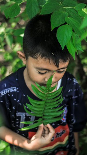 High angle view of boy holding leaves by plant