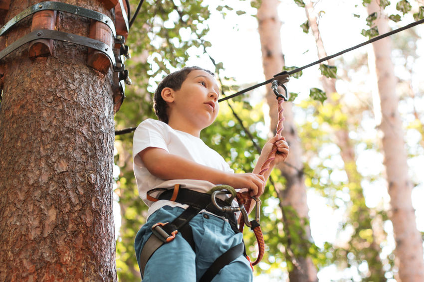 Cute boy 8 years old in adventure rope town Boy Casual Clothing Climbing Day Focus On Foreground Hairstyle Holding Leisure Activity Lifestyles Nature One Person Outdoors Plant Real People Rope Town Safety Harness Three Quarter Length Tree Tree Trunk Trunk Young Adult Young Women