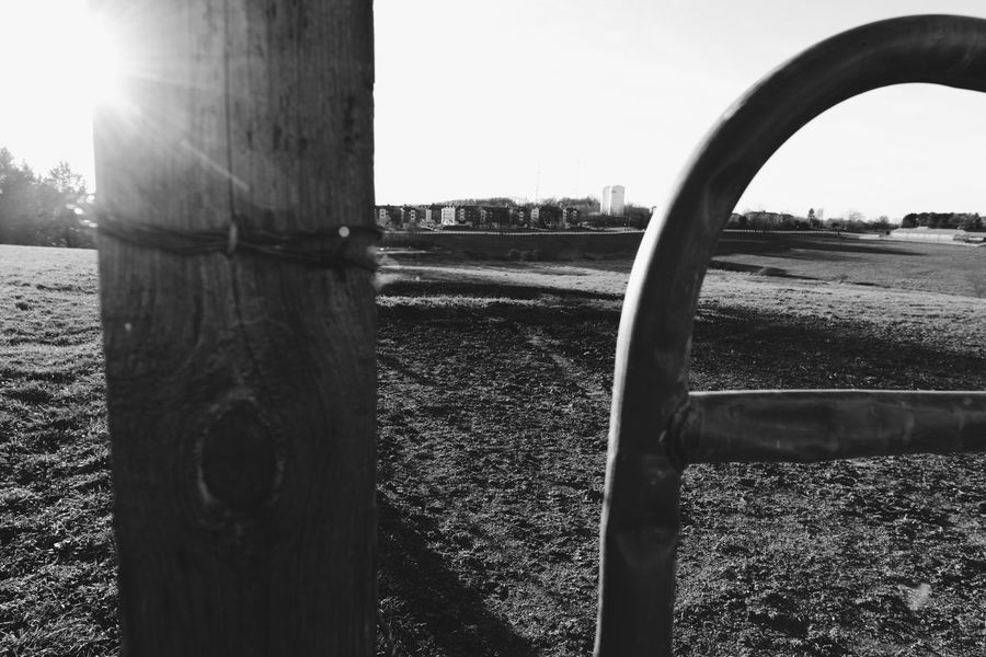 Check This Out Hanging Out Hello World Taking Photos Capturing Freedom Cowfarm Cool Fine Art Photography Wideangle Enjoying The View Fineart Countryside Black And White Farm Connecticut Check This Out Black & White Blackandwhite Photography Beautiful Art Relaxing