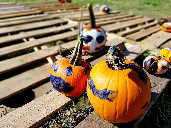 EyeEm Selects Pumpkin Halloween Close-up Outdoors Celebration No People Wood - Material Halloween Pumpkinpatch Pumpkin Carving Pumpkin Painting Fall Season PumpkinPatch🎃 Painting Pumpkins Painted Pumkins