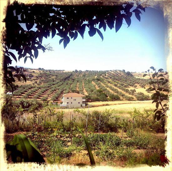 Landscape Landscape_photography Greece