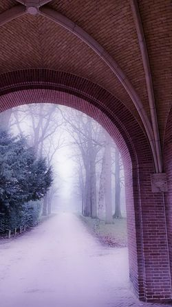 C l o s e r Netherlands Castle Foggy Mistymornings Pathways Roadandscenery The Way Forward