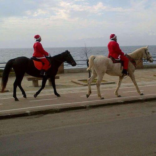 Babbi Natale equinizzati! #alghero #sardinia #sardegna #xmas #christmas #italy #santa #santaclaus #horses #sea #mare Sea Italy Christmas Xmas Santa Horses Sardegna Mare Alghero Santaclaus Sardinia