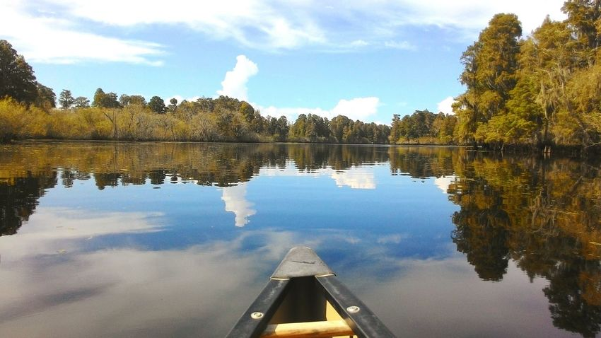 Floating om thr sky Tampa Canoeing RiverFrontPark Breathtaking View