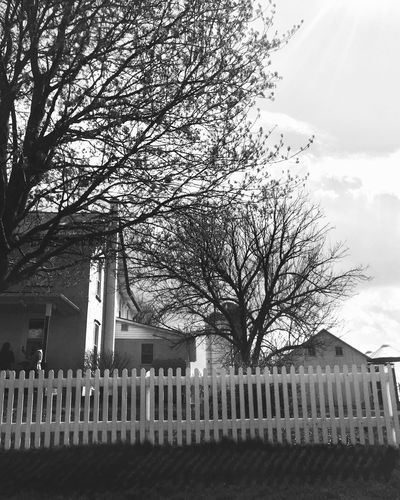 Tree Bare Tree Architecture Built Structure Outdoors Railing Building Exterior Cemetery Day Sky No People Black And White Branch Nature
