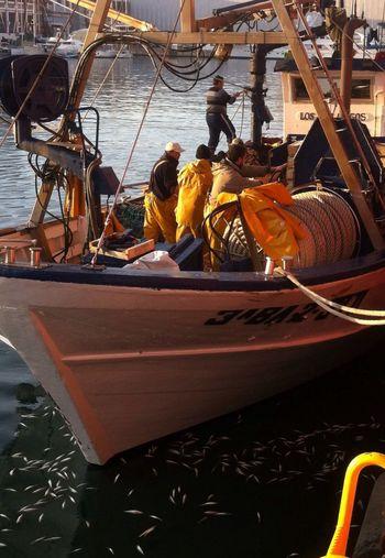 Fishermen Hard Job