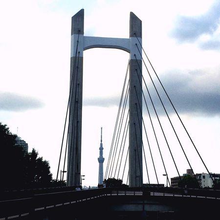 Tokyoskytree in Bridge