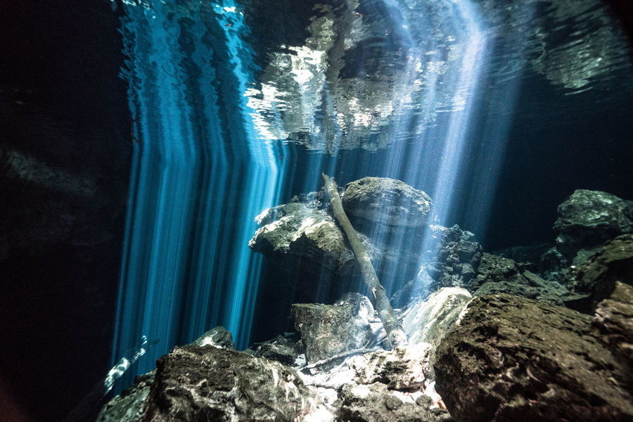 Black Background Cenotes Mexico Diving Beauty In Nature Cave Game Of Lights And Shadows Nature No People Reflection In The Water Rock Rock Formation Sun Reflection Underwater underwater photography Water