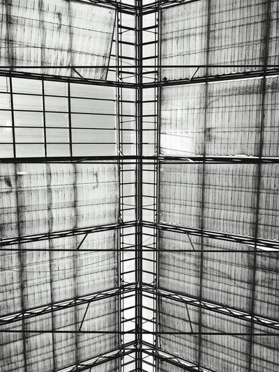 Full frame shot of ceiling in building