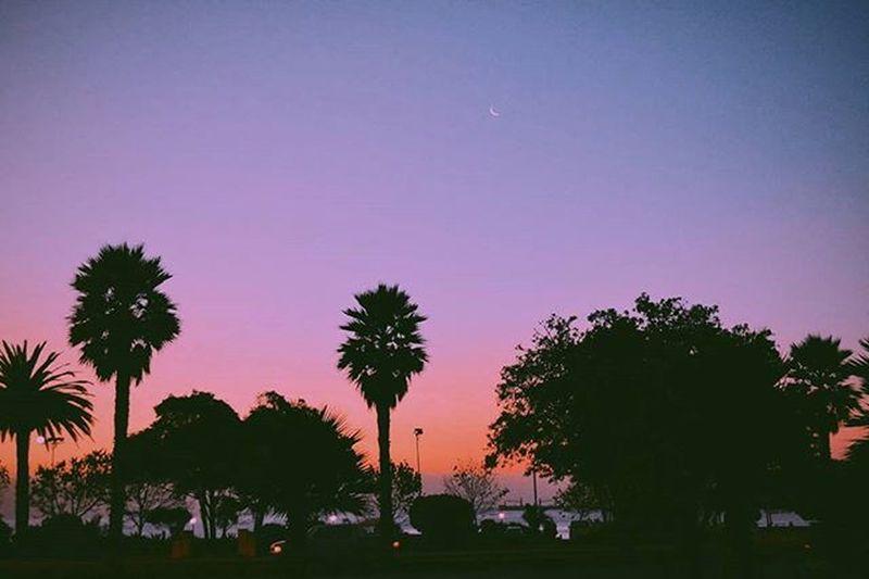 Vivir la pasión del momento, sentir tu cuerpo siguiendo mi aliento, sin nada que esconder, al infinito te llevaré 🎵🚀🔥 Vicentegarcia Mibalcon